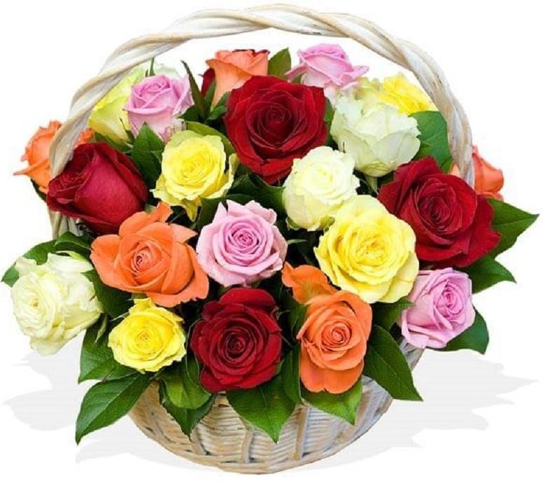 Магазины продажа, букеты разноцветных роз