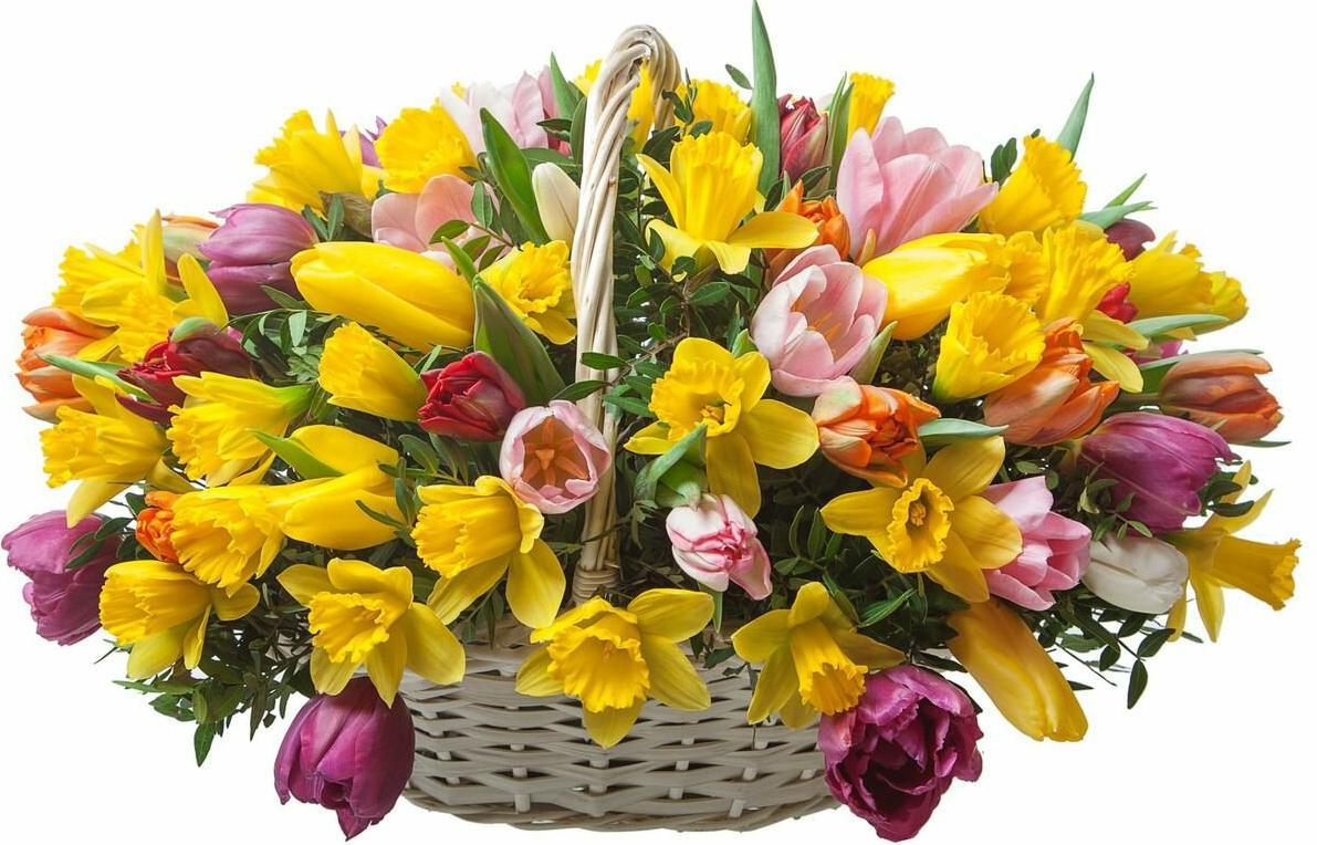 Нарциссы и тюльпаны букет, цветов букеты купите