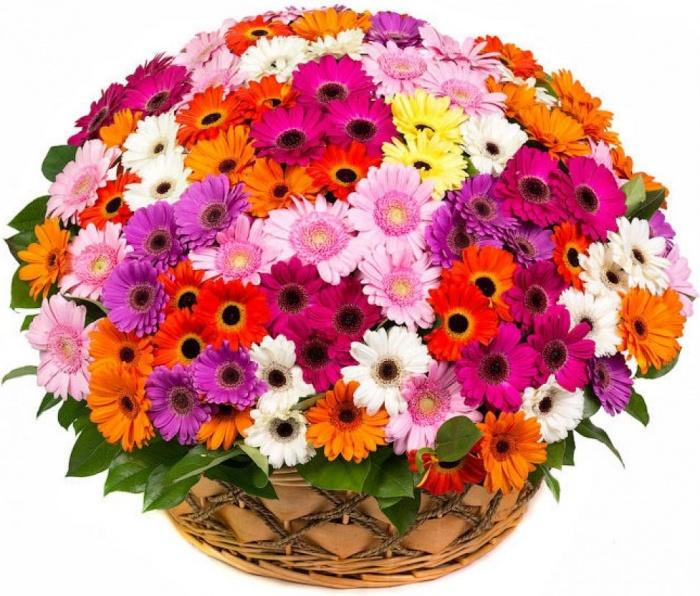Букеты супер цветов